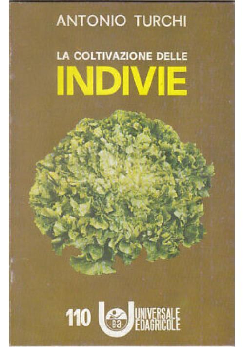 Antonio Turchi LA COLTIVAZIONE DELLE INDIVIE . Universale Edagricole 1966