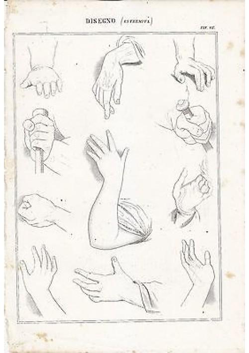 BELLE ARTI disegno estremità mani  braccia INCISIONE STAMPA RAME 1866 ORIGINALE