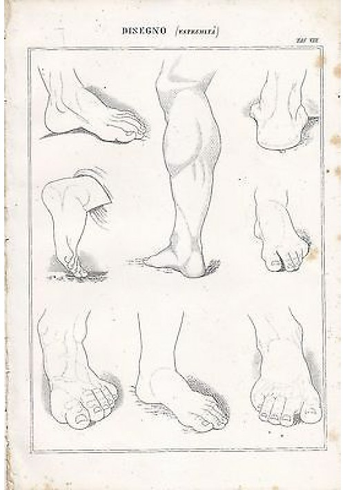 BELLE ARTI disegno estremità piedi polpacci INCISIONE STAMPA RAME 1866 ORIGINALE