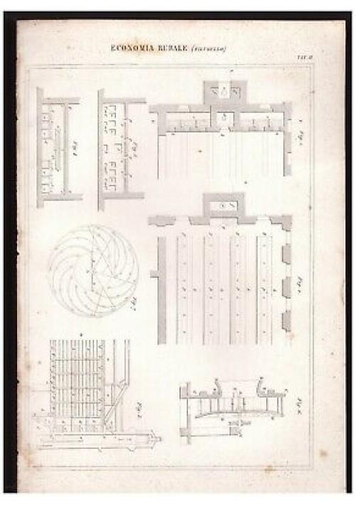 ECONOMIA RURALE Filugello tavola II INCISIONE STAMPA RAME 1866 disegno