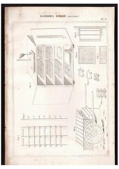 ECONOMIA RURALE Filugello tavola III INCISIONE STAMPA RAME 1866 disegno