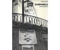 SAN DANIELE città salotto di Gianni Passalenti 1985 Mandi cronaca e storia