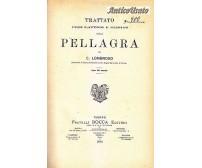 TRATTATO PROFILATTICO E CLINICO DELLA PELLAGRA di C. Lombroso 1892 Bocca I ediz.