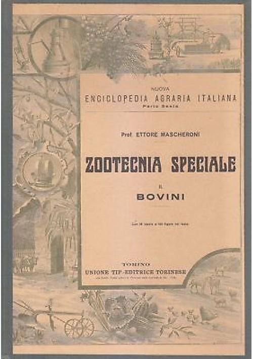 ZOOTECNIA SPECIALE BOVINI di Ettore Mascheroni 1927 Utet enciclopedia agraria *