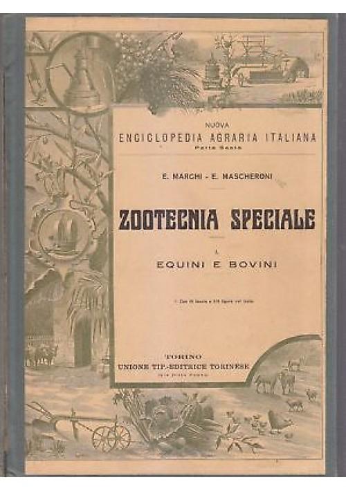 ZOOTECNIA SPECIALE EQUINI E BOVINI di Ettore Mascheroni Ezio Marchi 1927 Utet *